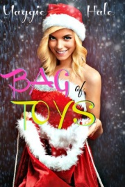 Bag Of Toys by Maggie Hale