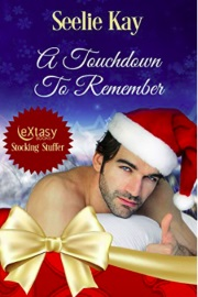 A Touchdown To Remember by Seelie Kay
