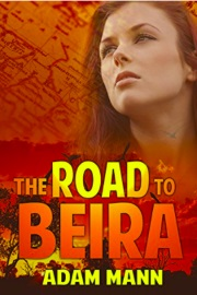 The Road To Beira by Adam Mann